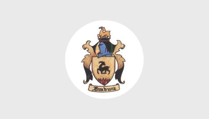 bindura logo