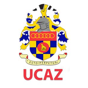 Chiredzi Town Council